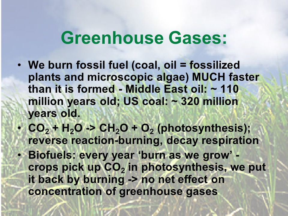 Greenhouse Gases: We burn fossil fuel (coal, oil = fossilized plants and microscopic algae) MUCH faster than it is formed - Middle East oil: ~ 110 million years old; US coal: ~ 320 million years old.