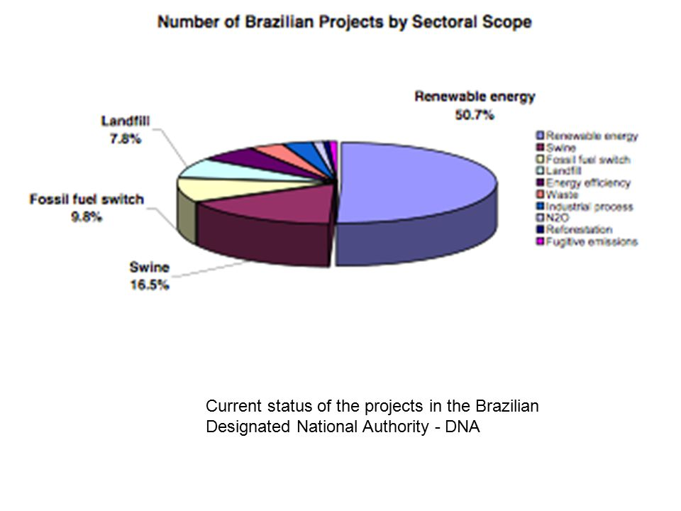 Current status of the projects in the Brazilian Designated National Authority - DNA