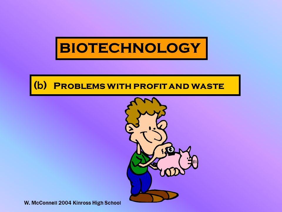 W. McConnell 2004 Kinross High School BIOTECHNOLOGY ( b ) Problems with profit and waste