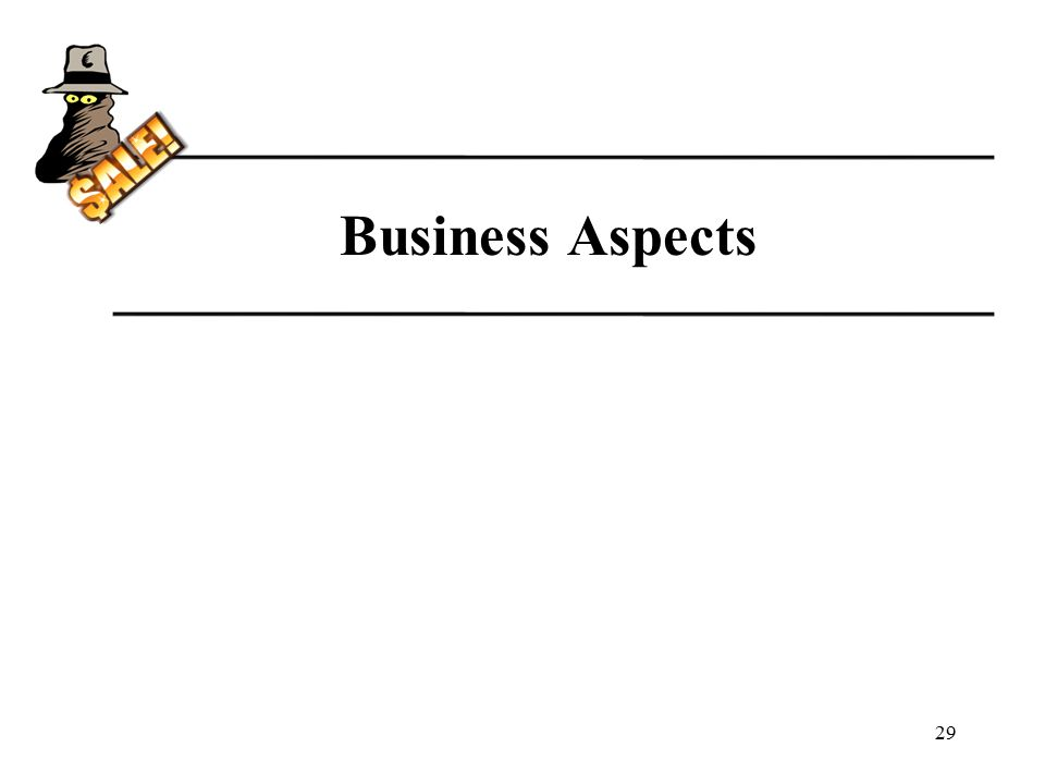 Business Aspects 29