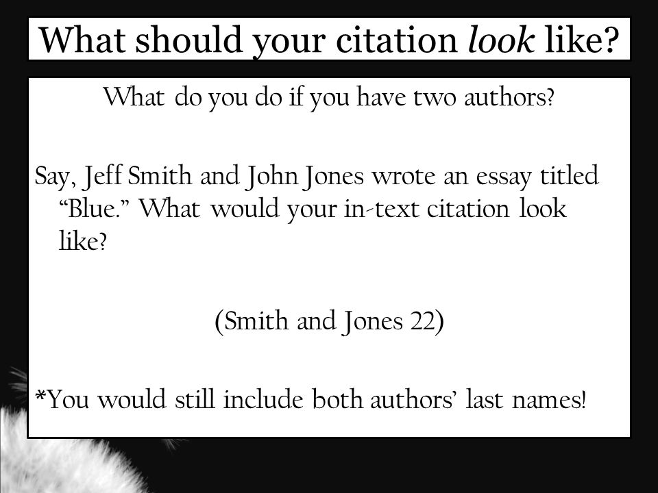 What should your citation look like. What do you do if you have two authors.