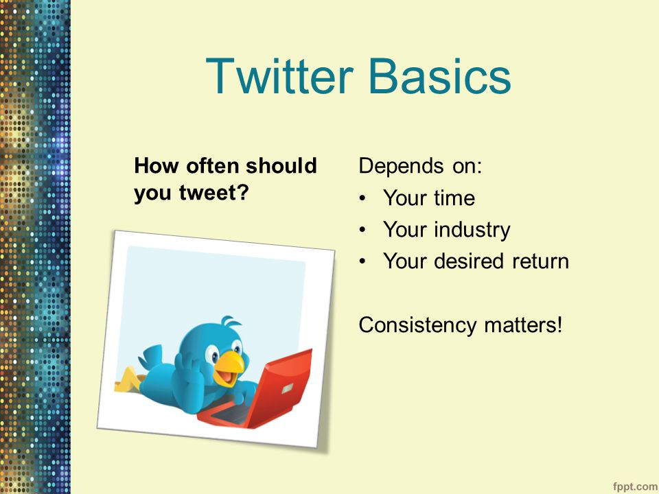 Twitter Basics How often should you tweet.
