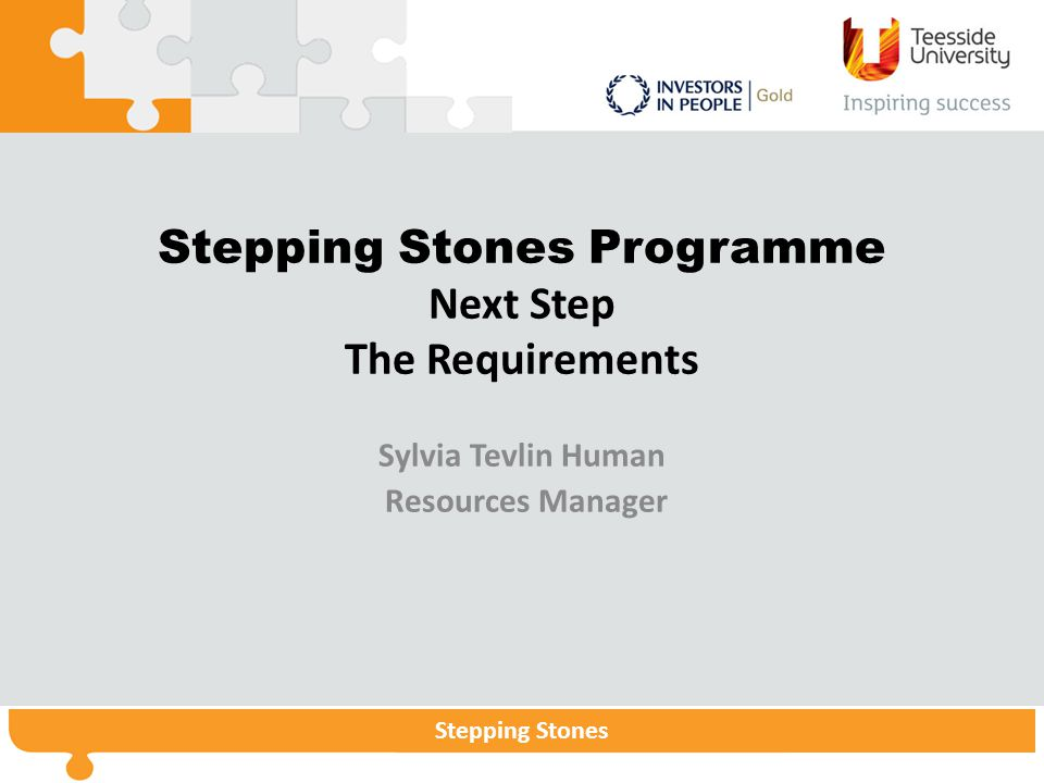 Stepping StonesStepping Stones Programme Stepping Stones Stepping Stones Programme Next Step The Requirements Sylvia Tevlin Human Resources Manager