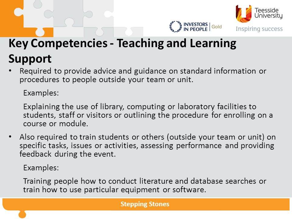 Stepping Stones Key Competencies - Teaching and Learning Support Required to provide advice and guidance on standard information or procedures to people outside your team or unit.