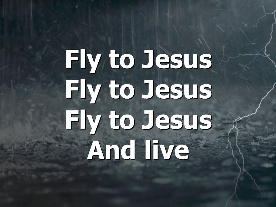 Fly to Jesus Fly to Jesus Fly to Jesus And live