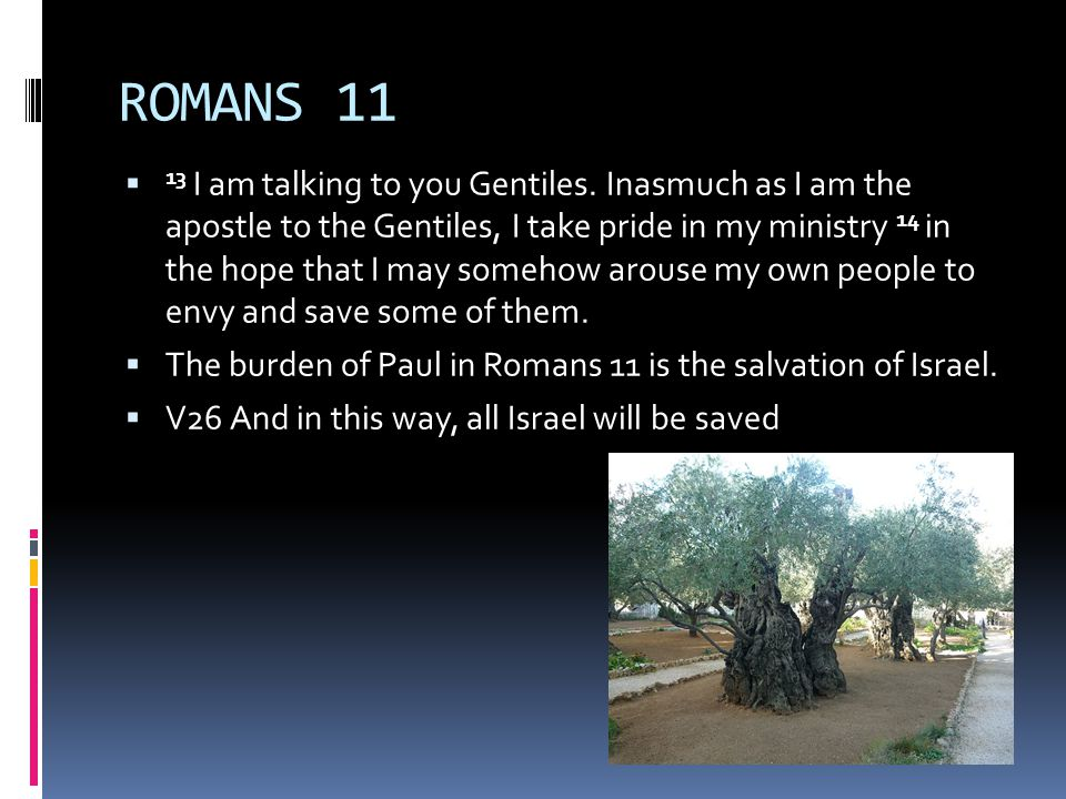 ROMANS 11  13 I am talking to you Gentiles.