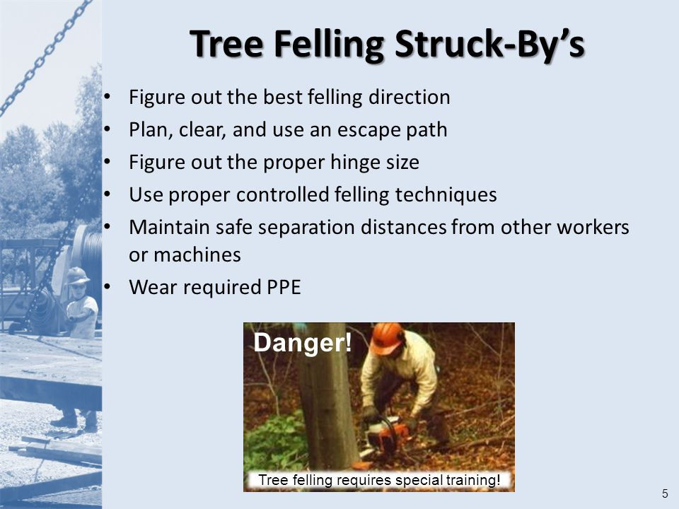 5 Tree Felling Struck-By's Figure out the best felling direction Plan, clear, and use an escape path Figure out the proper hinge size Use proper controlled felling techniques Maintain safe separation distances from other workers or machines Wear required PPE Danger.