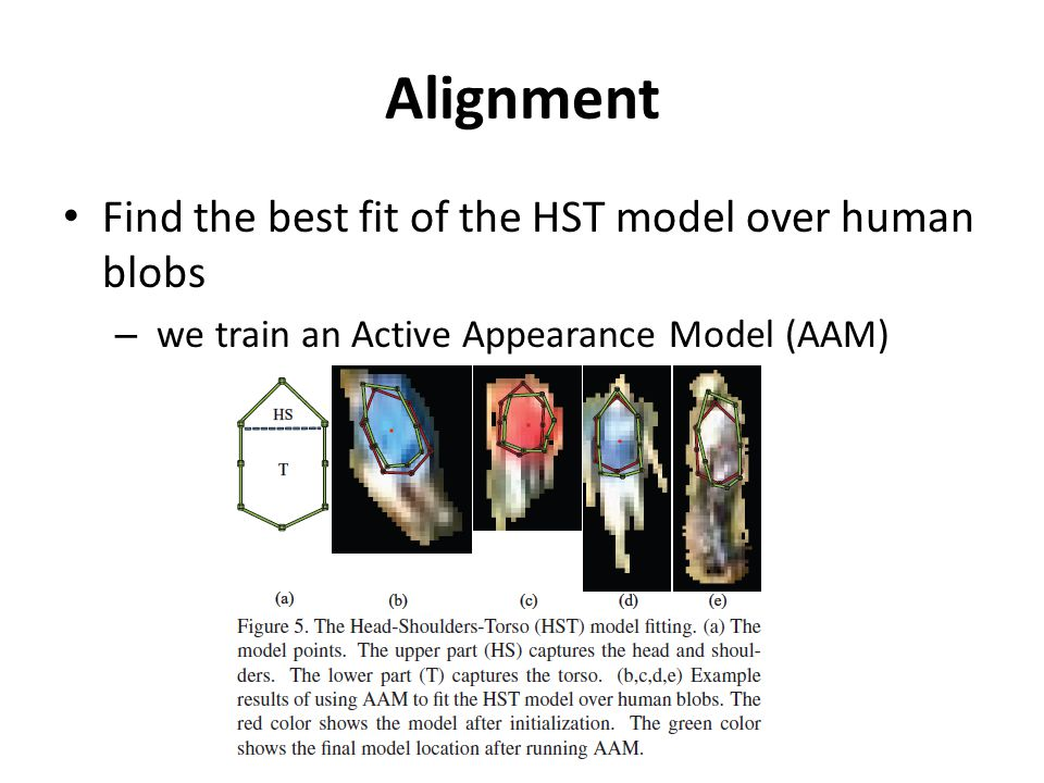 Alignment Find the best fit of the HST model over human blobs – we train an Active Appearance Model (AAM)