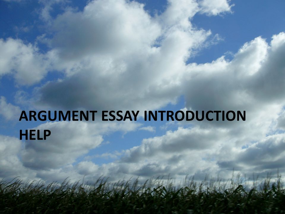 Argument Essay Introduction Help Types Of Leads Strong Question   Argument Essay Introduction Help
