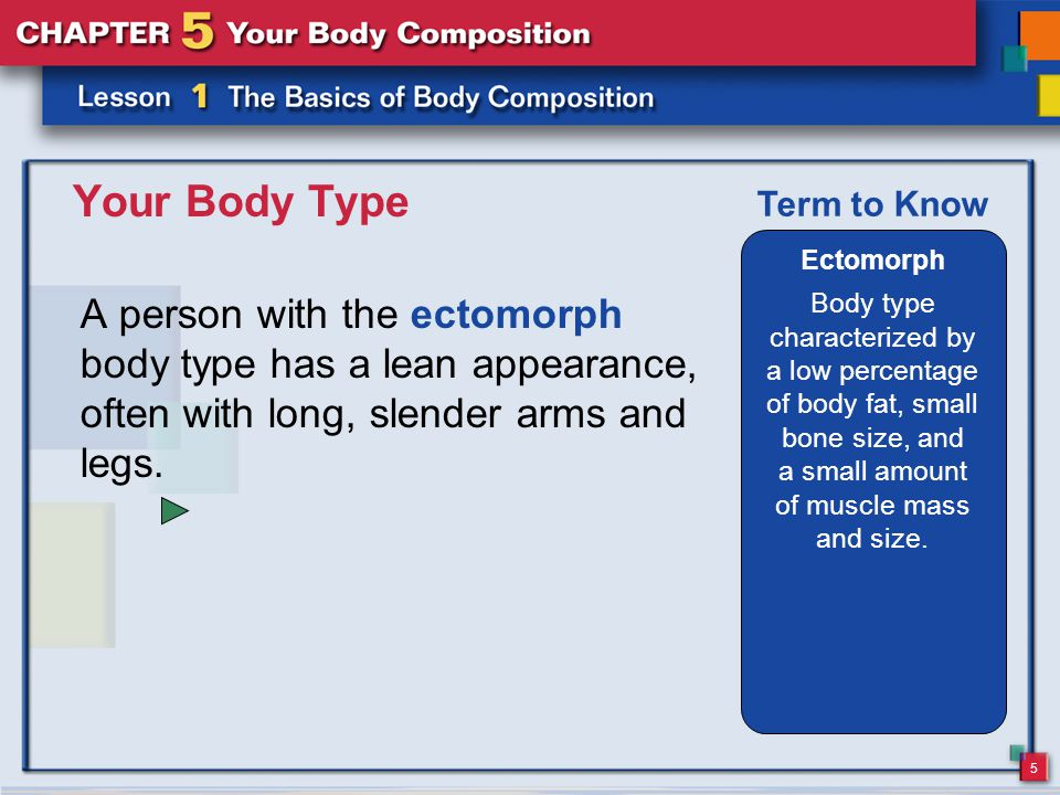 5 Your Body Type Ectomorph Body type characterized by a low percentage of body fat, small bone size, and a small amount of muscle mass and size.