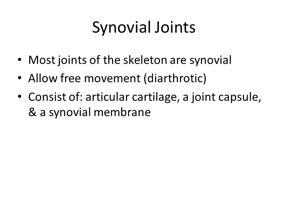 joint that allows free movement