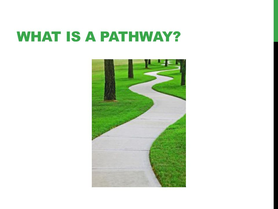 WHAT IS A PATHWAY