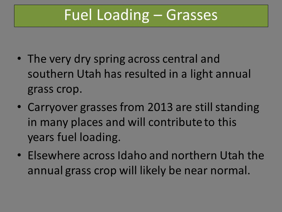 Fuel Loading – Grasses The very dry spring across central and southern Utah has resulted in a light annual grass crop.
