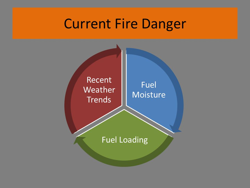 Current Fire Danger Fuel Moisture Fuel Loading Recent Weather Trends
