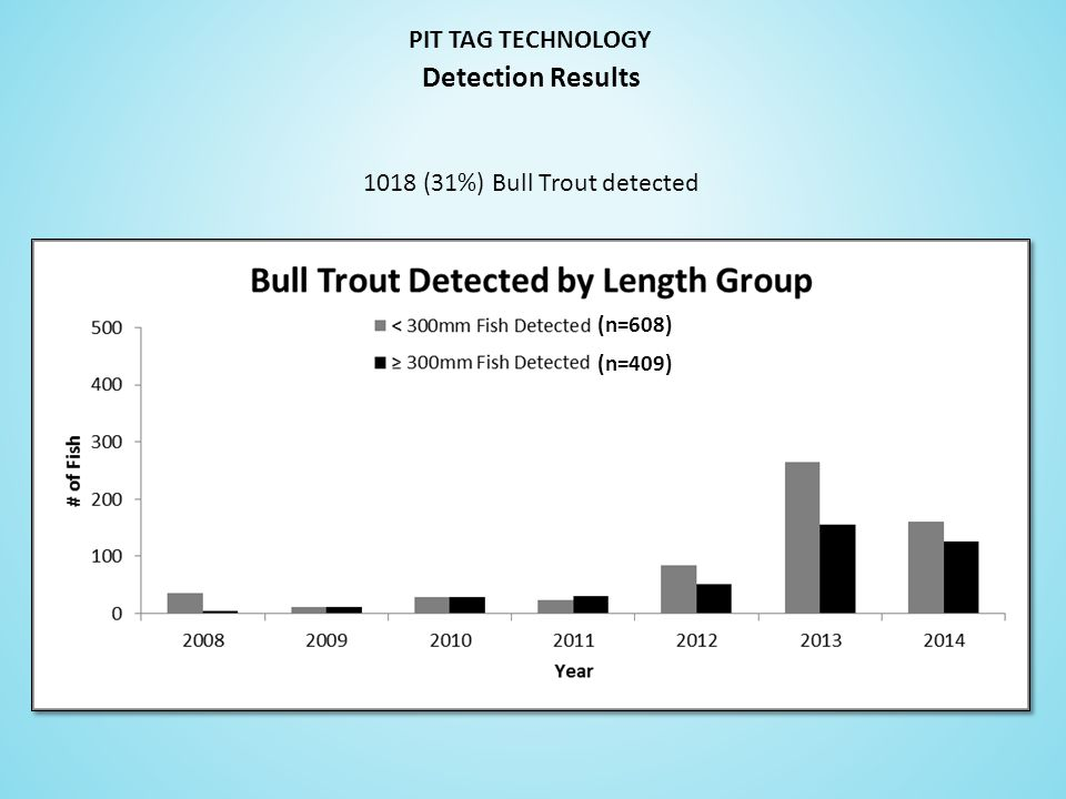 PIT TAG TECHNOLOGY 1018 (31%) Bull Trout detected Detection Results (n=608) (n=409)