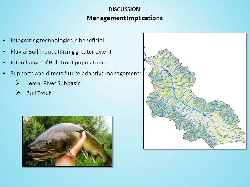 Integrating technologies is beneficial Fluvial Bull Trout utilizing greater extent Interchange of Bull Trout populations Supports and directs future adaptive management:  Lemhi River Subbasin  Bull Trout DISCUSSION Management Implications