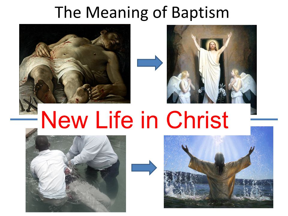 The Meaning of Baptism New Life in Christ