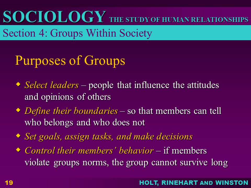 THE STUDY OF HUMAN RELATIONSHIPS SOCIOLOGY HOLT, RINEHART AND WINSTON 19 Purposes of Groups  Select leaders – people that influence the attitudes and opinions of others  Define their boundaries – so that members can tell who belongs and who does not  Set goals, assign tasks, and make decisions  Control their members' behavior – if members violate groups norms, the group cannot survive long Section 4: Groups Within Society