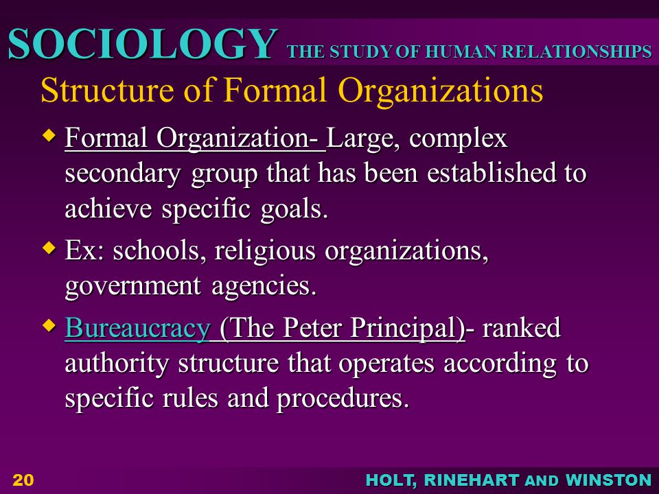 THE STUDY OF HUMAN RELATIONSHIPS SOCIOLOGY HOLT, RINEHART AND WINSTON Structure of Formal Organizations  Formal Organization- Large, complex secondary group that has been established to achieve specific goals.