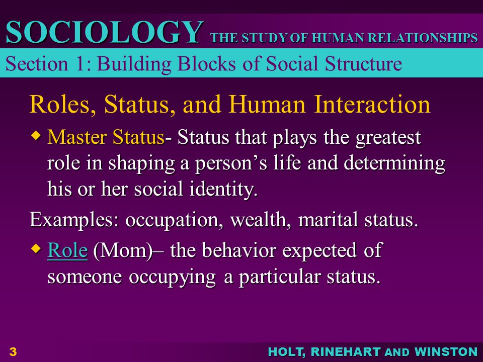 THE STUDY OF HUMAN RELATIONSHIPS SOCIOLOGY HOLT, RINEHART AND WINSTON 3 Roles, Status, and Human Interaction  Master Status- Status that plays the greatest role in shaping a person's life and determining his or her social identity.