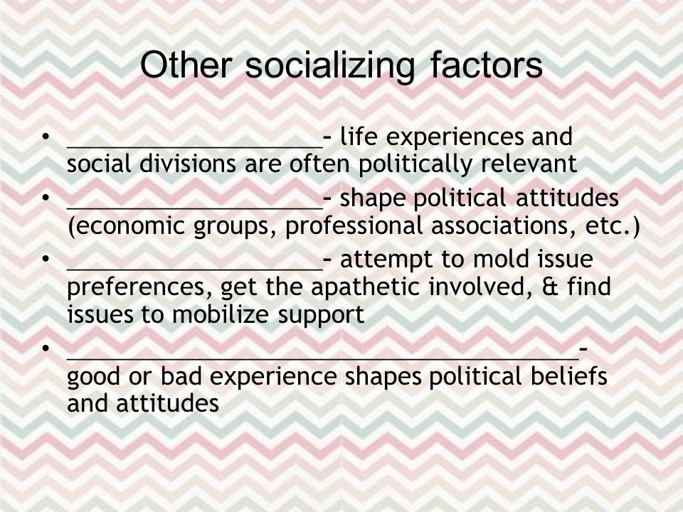 Other socializing factors ____________________ – life experiences and social divisions are often politically relevant ____________________ – shape political attitudes (economic groups, professional associations, etc.) ____________________ – attempt to mold issue preferences, get the apathetic involved, & find issues to mobilize support ________________________________________ – good or bad experience shapes political beliefs and attitudes
