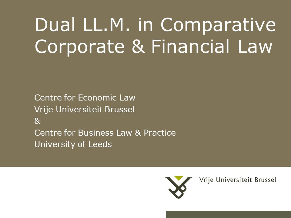 corporate lawyers and corporate governance loughrey joan