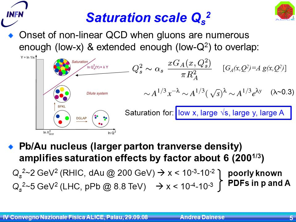 IV Convegno Nazionale Fisica ALICE, Palau, Andrea Dainese 5 Saturation scale Q s 2 Onset of non-linear QCD when gluons are numerous enough (low-x) & extended enough (low-Q 2 ) to overlap: Pb/Au nucleus (larger parton tranverse density) amplifies saturation effects by factor about 6 (200 1/3 ) Q s 2 ~2 GeV 2 (RHIC, 200 GeV)  x < Q s 2 ~5 GeV 2 (LHC, 8.8 TeV)  x <  ~0.3) Saturation for: low x, large  s, large y, large A [G A (x,Q 2 )=A g(x,Q 2 )] poorly known PDFs in p and A