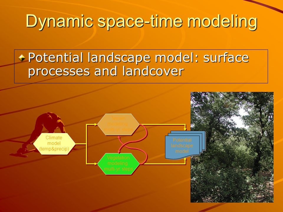 Dynamic space-time modeling Potential landscape model: surface processes and landcover Vegetation modeling: multi-yr.