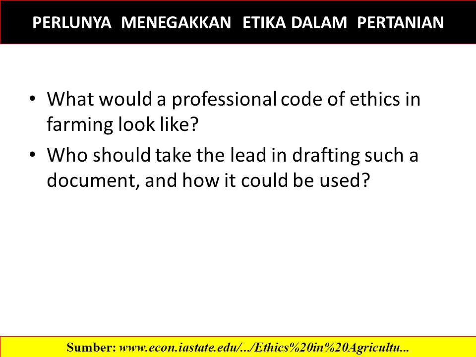 What would a professional code of ethics in farming look like.