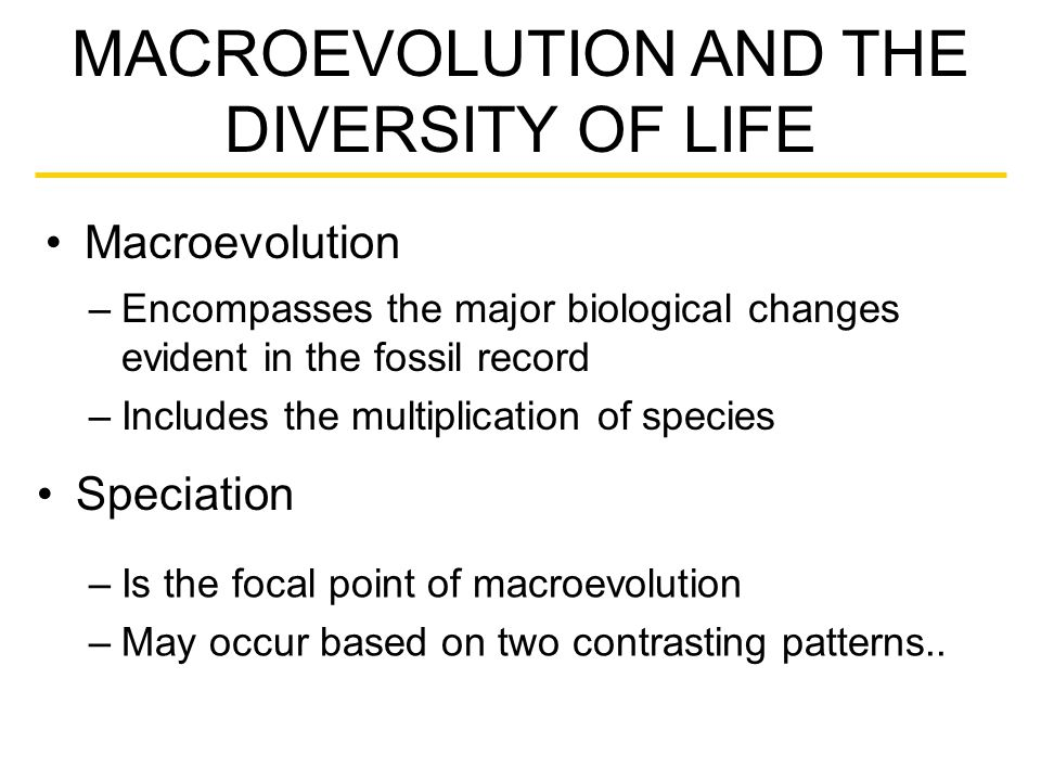 Macroevolution MACROEVOLUTION AND THE DIVERSITY OF LIFE –Encompasses the major biological changes evident in the fossil record –Includes the multiplication of species Speciation –Is the focal point of macroevolution –May occur based on two contrasting patterns..