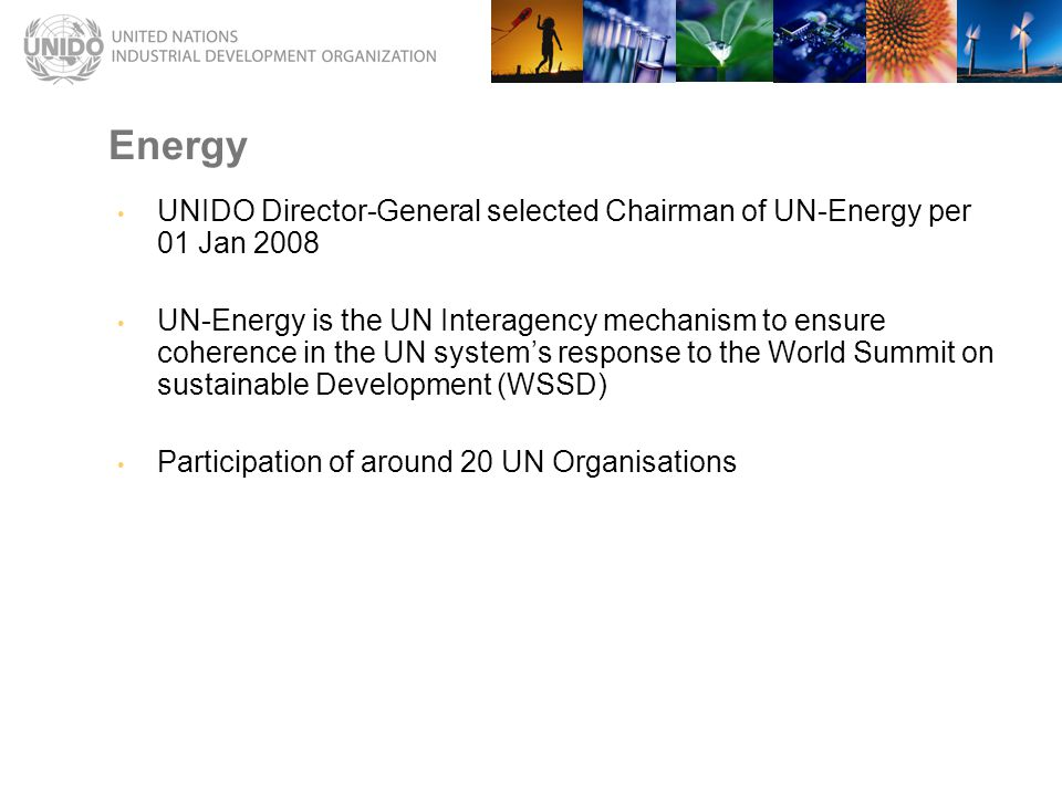 UNIDO Director-General selected Chairman of UN-Energy per 01 Jan 2008 UN-Energy is the UN Interagency mechanism to ensure coherence in the UN system's response to the World Summit on sustainable Development (WSSD) Participation of around 20 UN Organisations Energy