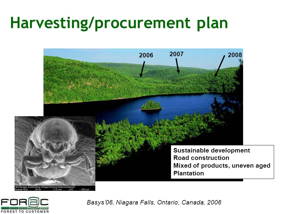 Basys'06, Niagara Falls, Ontario, Canada, 2006 Harvesting/procurement plan 2006 2008 2007 Sustainable development Road construction Mixed of products, uneven aged Plantation