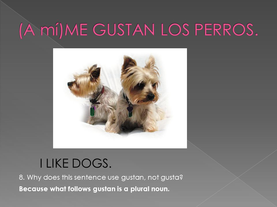 I LIKE DOGS. 8. Why does this sentence use gustan, not gusta.