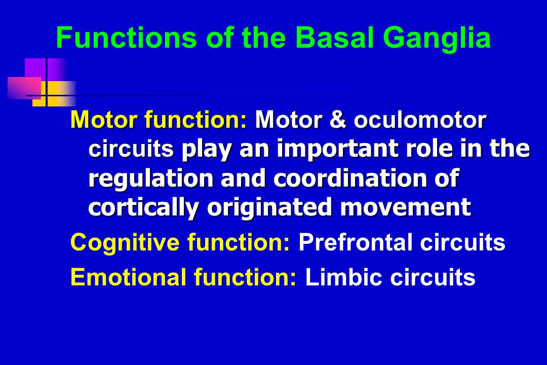 Functions of the Basal Ganglia Motor function: Motor & oculomotor circuits play an important role in the regulation and coordination of cortically originated movement Cognitive function: Prefrontal circuits Emotional function: Limbic circuits