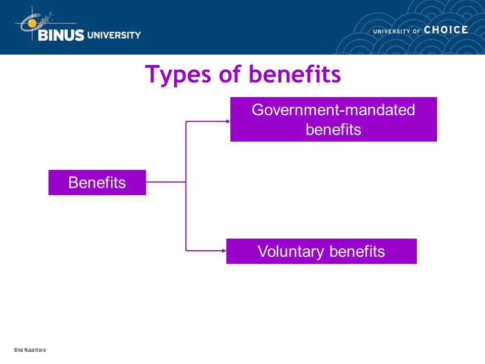 Bina Nusantara Types of benefits Benefits Government-mandated benefits Voluntary benefits