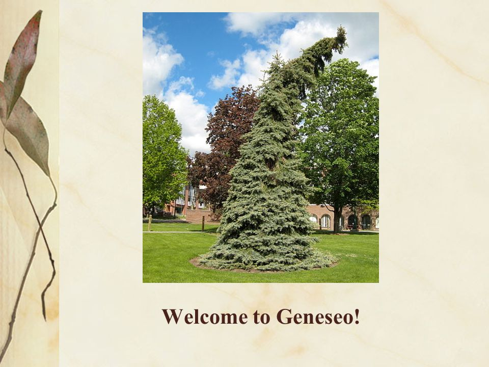 Welcome to Geneseo!
