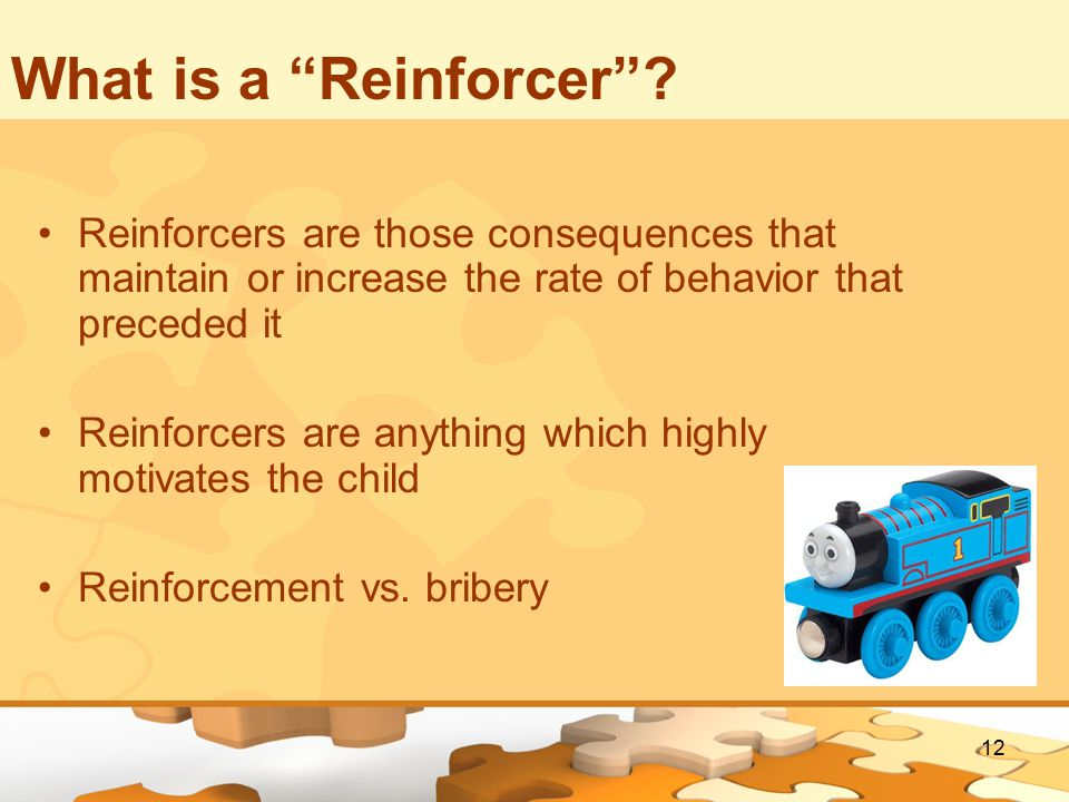 12 What is a Reinforcer .