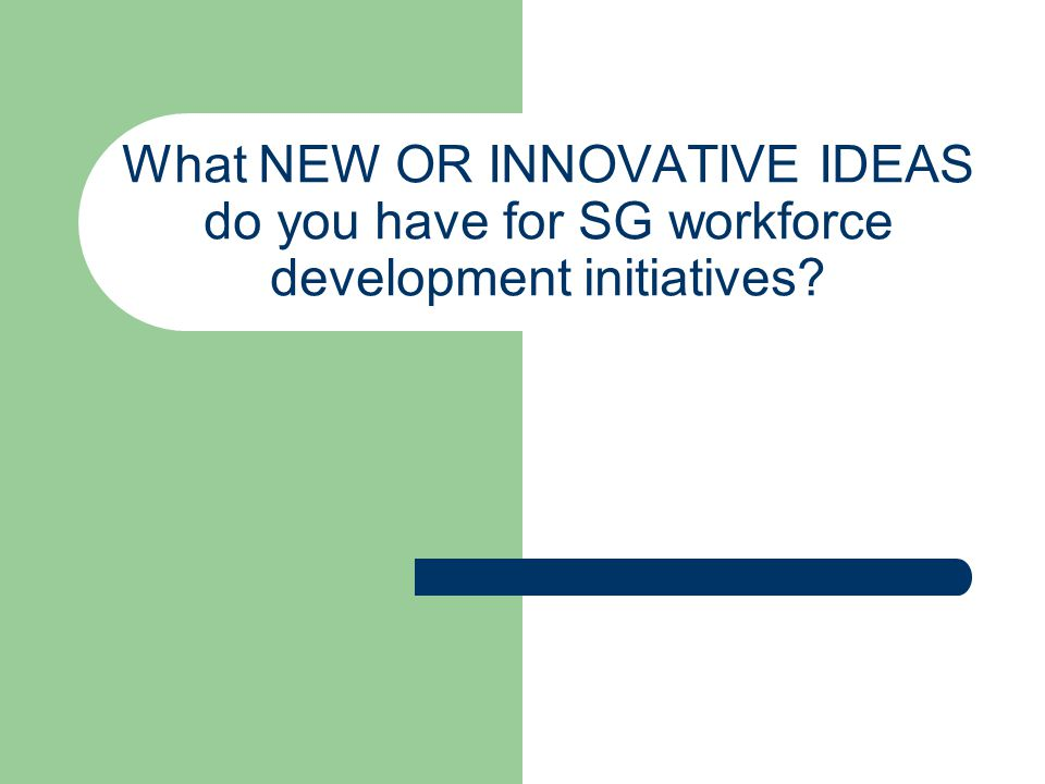What NEW OR INNOVATIVE IDEAS do you have for SG workforce development initiatives