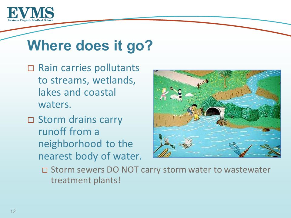  Rain carries pollutants to streams, wetlands, lakes and coastal waters.