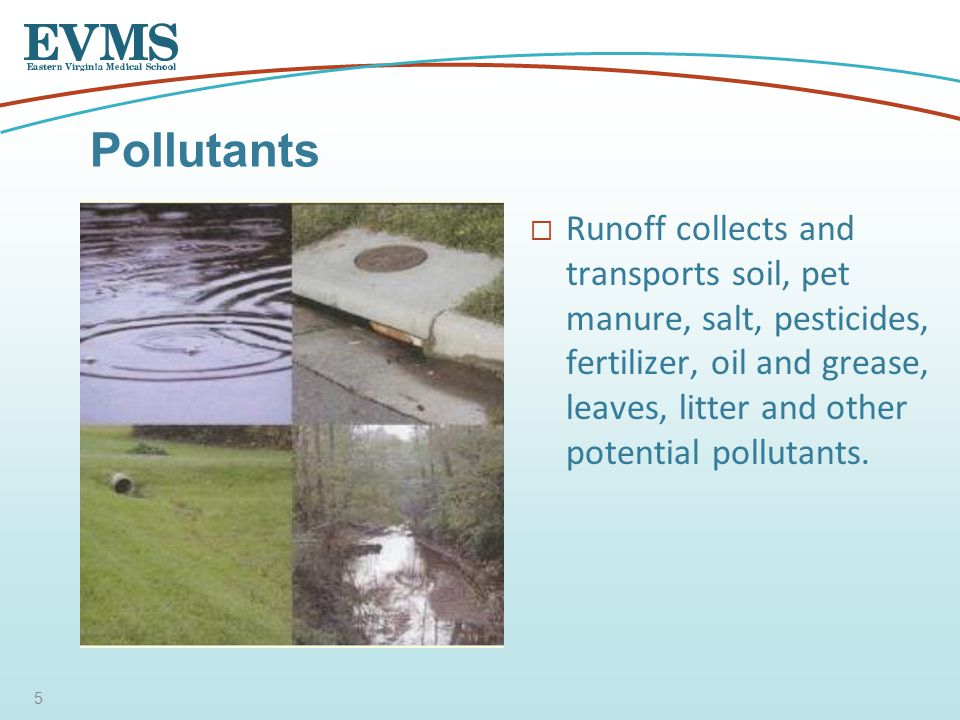  Runoff collects and transports soil, pet manure, salt, pesticides, fertilizer, oil and grease, leaves, litter and other potential pollutants.