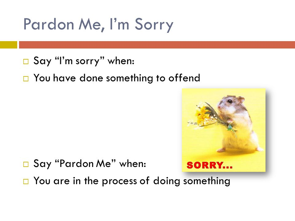 Pardon Me, I'm Sorry  Say I'm sorry when:  You have done something to offend  Say Pardon Me when:  You are in the process of doing something