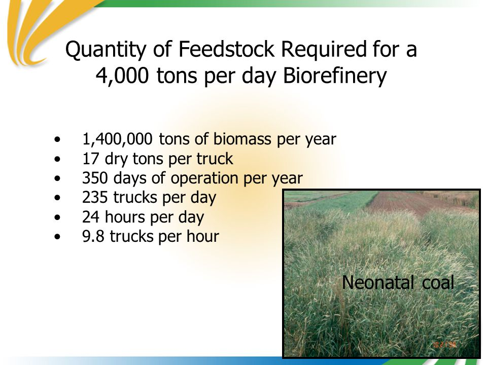Quantity of Feedstock Required for a 4,000 tons per day Biorefinery 1,400,000 tons of biomass per year 17 dry tons per truck 350 days of operation per year 235 trucks per day 24 hours per day 9.8 trucks per hour Neonatal coal