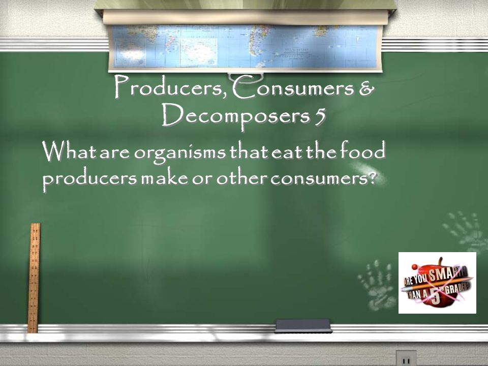 Producers, Consumers & Decomposers 4 What is an organism, such as a plant, that makes food