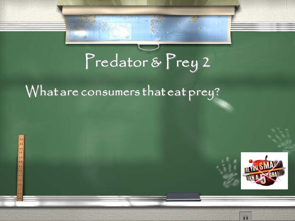 Predator & Prey 1 What are consumers that are eaten by predators