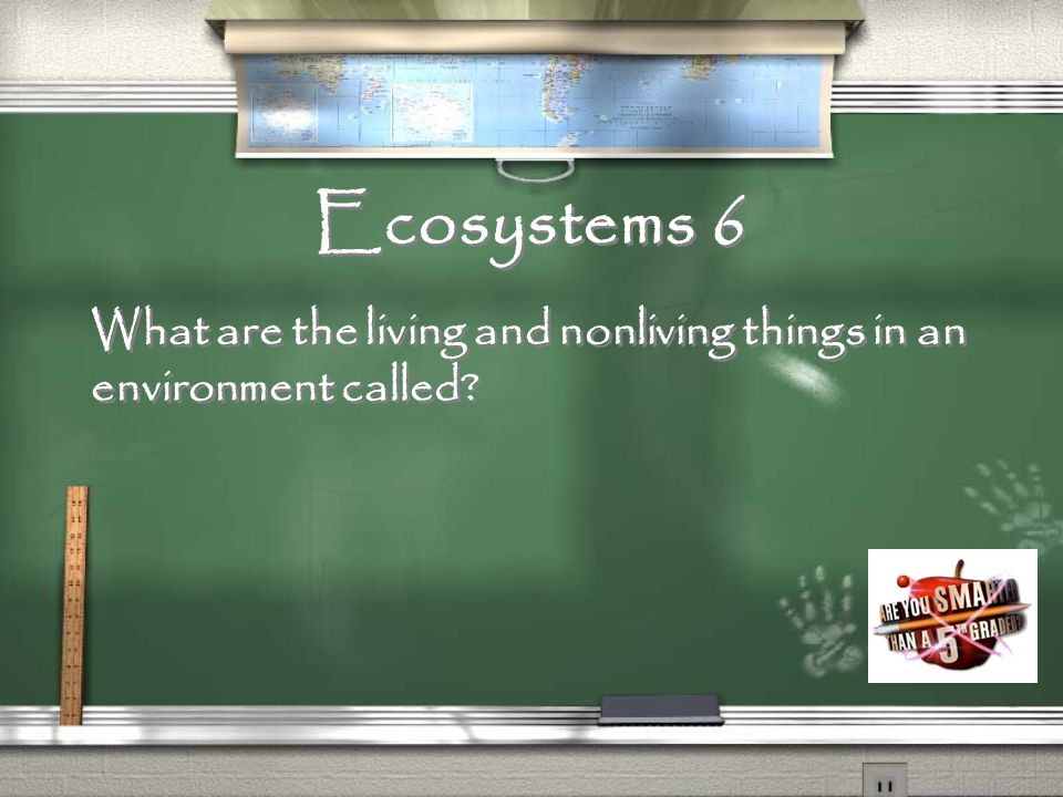 Ecosystems 5 Name two living things.