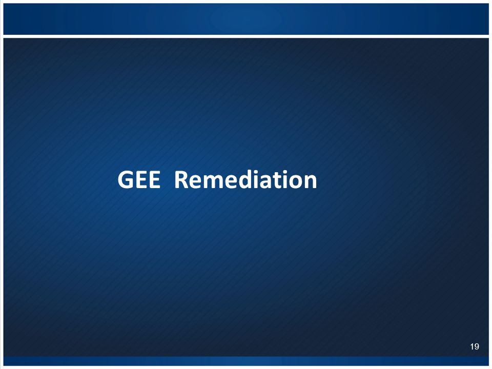 GEE Remediation 19