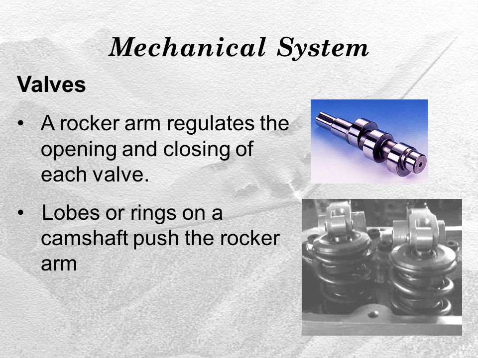 Mechanical System Valves A rocker arm regulates the opening and closing of each valve.