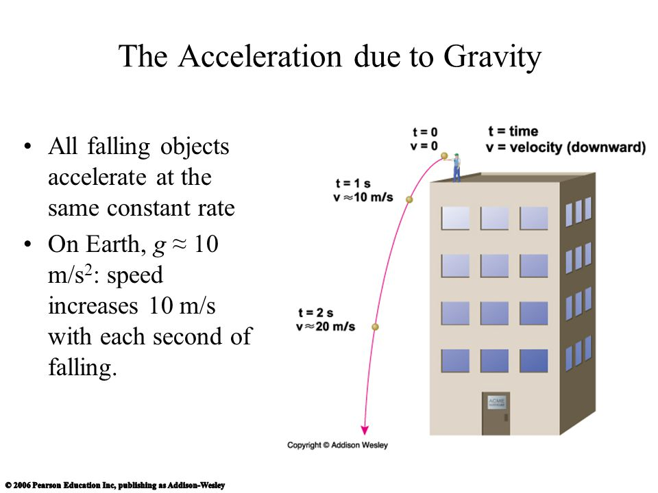 The Acceleration due to Gravity All falling objects accelerate at the same constant rate On Earth, g ≈ 10 m/s 2 : speed increases 10 m/s with each second of falling.