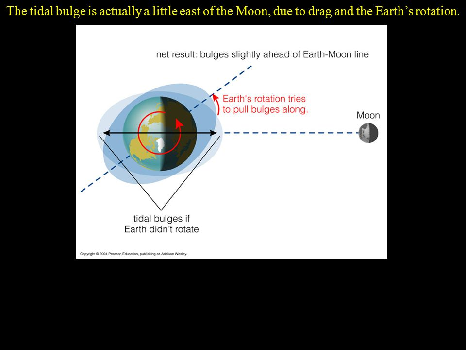 The tidal bulge is actually a little east of the Moon, due to drag and the Earth's rotation.