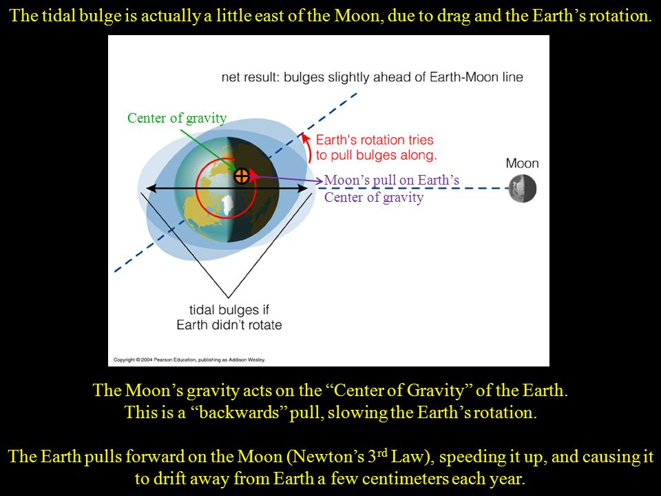 The Moon's gravity acts on the Center of Gravity of the Earth.